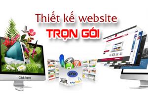 Thiết kế website Bình Dương
